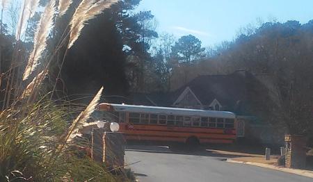 My new school bus